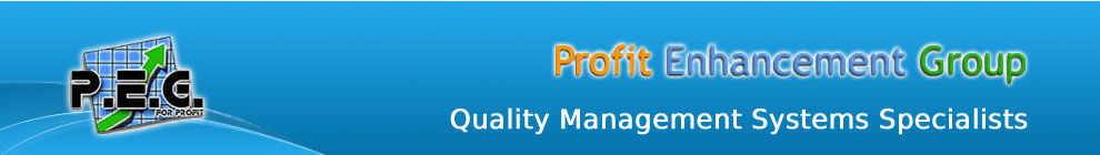 Profit Enhancement Group - Quality Management System Specialsits